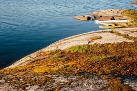 Guided kayak tour around islands of Stockholm Archipelago
